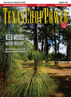 Texas Co-op Power January 2019 Cover