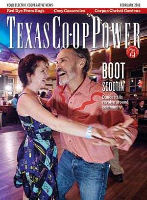 Texas Co-op Power February 2019 Cover